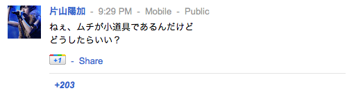 片山陽加さんの google+より